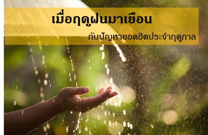 เมื่อฤดูฝนมาเยือนกับปัญหายอดฮิตประจำฤดูกาล